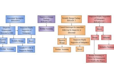 Algorithm for Screening Mammogram